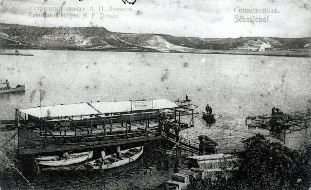 Устричный завод Денакса в Севастополе